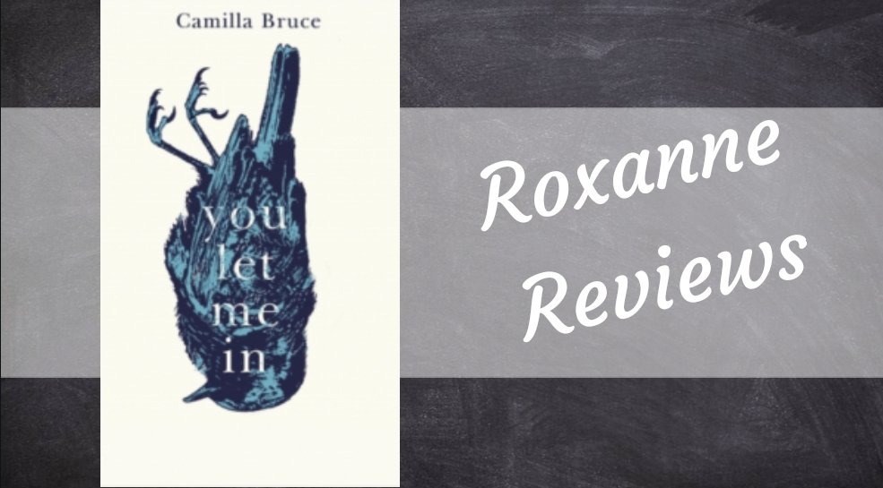 Book Review; You Let Me In – Camilla Bruce